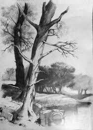 pencil drawings of the world 12 (1)
