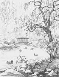 pencil sketch of nature 14 (1)