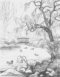pencil sketch of nature 14 (1)