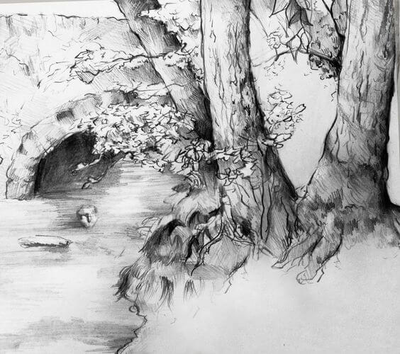 18 Pencil Drawings Of Nature That Will Make You Want To Be ...