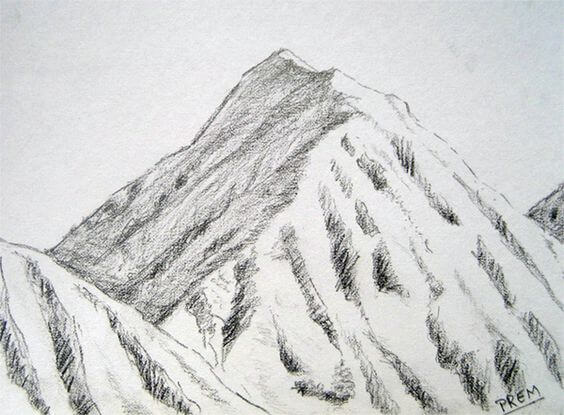pencil drawings of nature 18 (1)