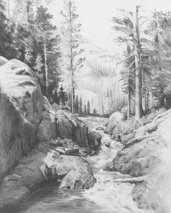 pencil sketches of nature 4 (1)