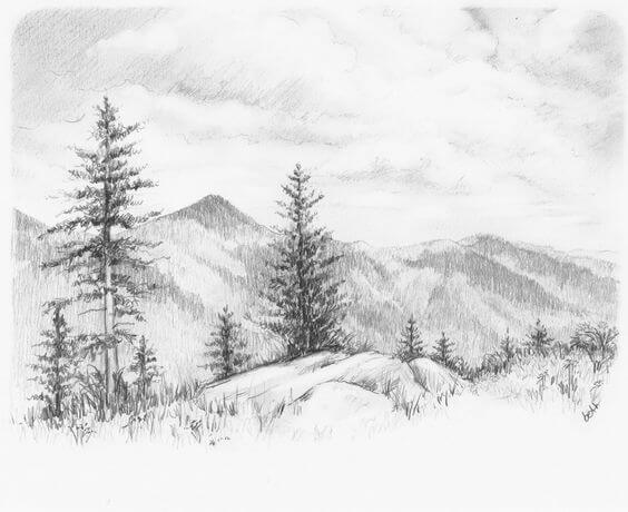 pencil sketches of nature 5 (1)
