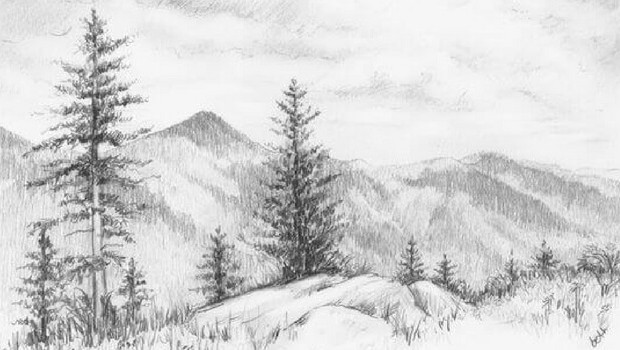 pencil drawings of nature feat (1)
