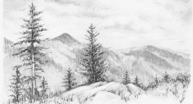 18 Pencil Drawings Of Nature That Will Make You Want To Be An Artist