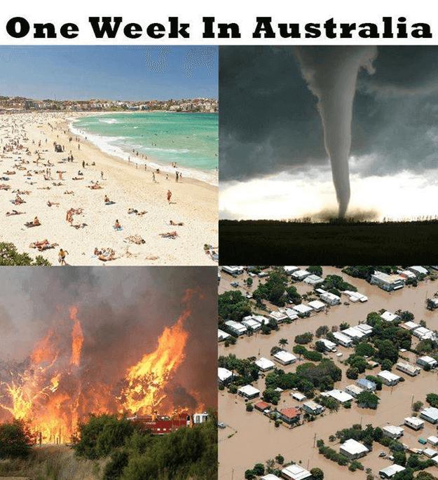 Australia nope 26 (1)