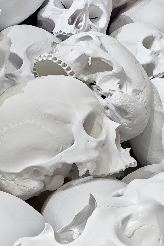 ron mueck huge skulls 7 (1)