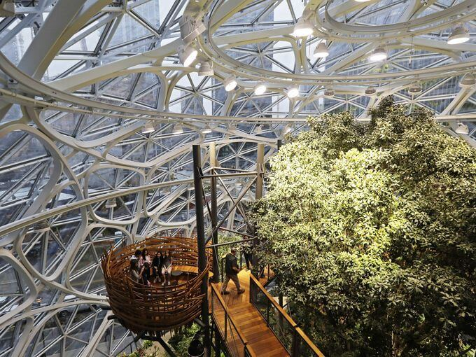 Amazon Spheres seattle 6 (1)
