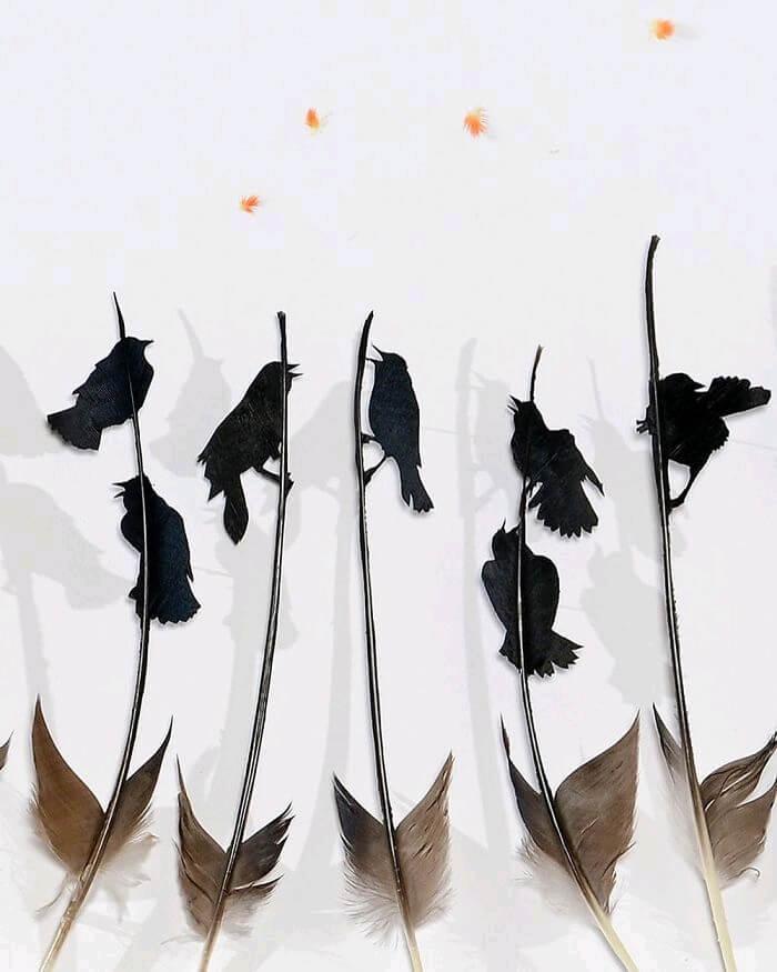 chris maynard feather art 2 (1)