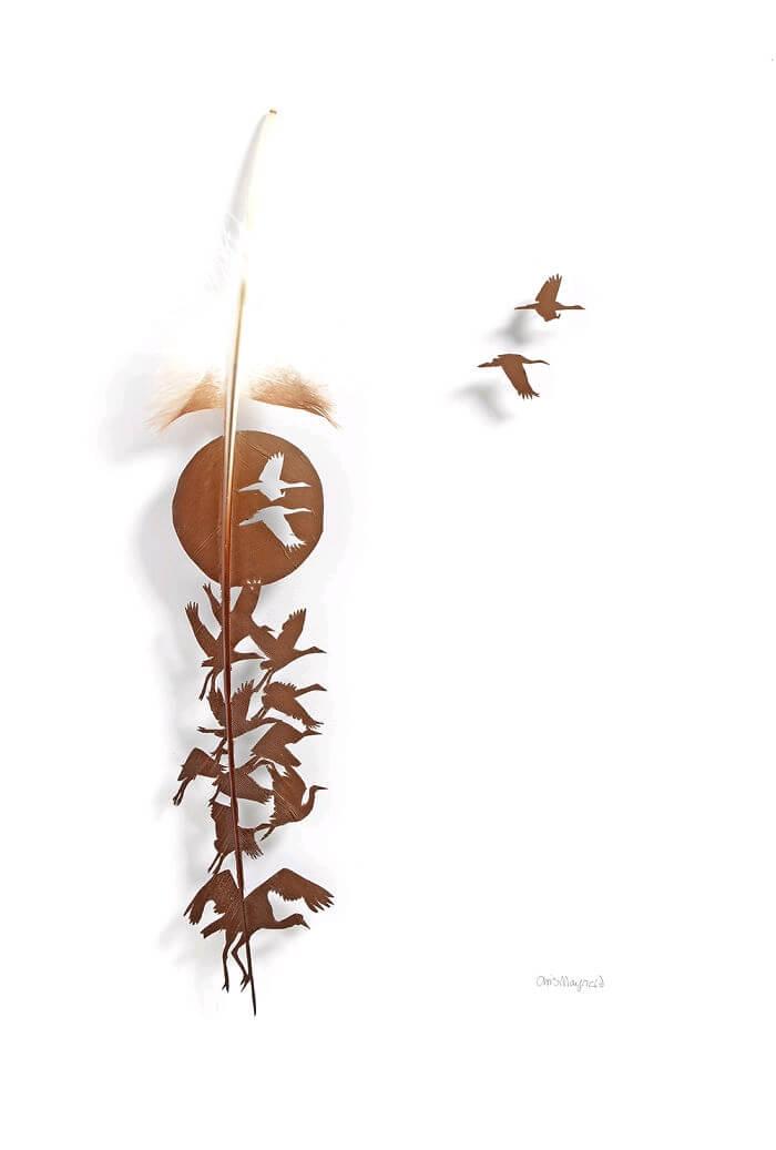 chris maynard feather designs 8 (1)