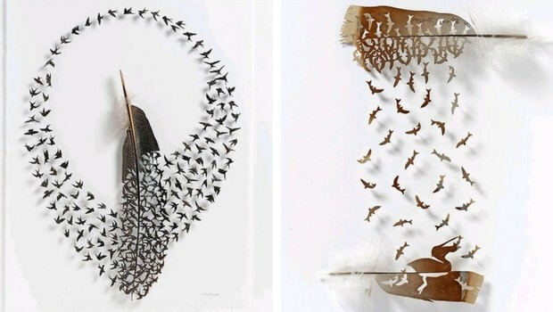 chris maynard feather art feat (1)