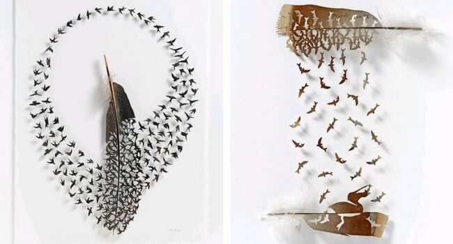 chris maynard feather art feat (1)