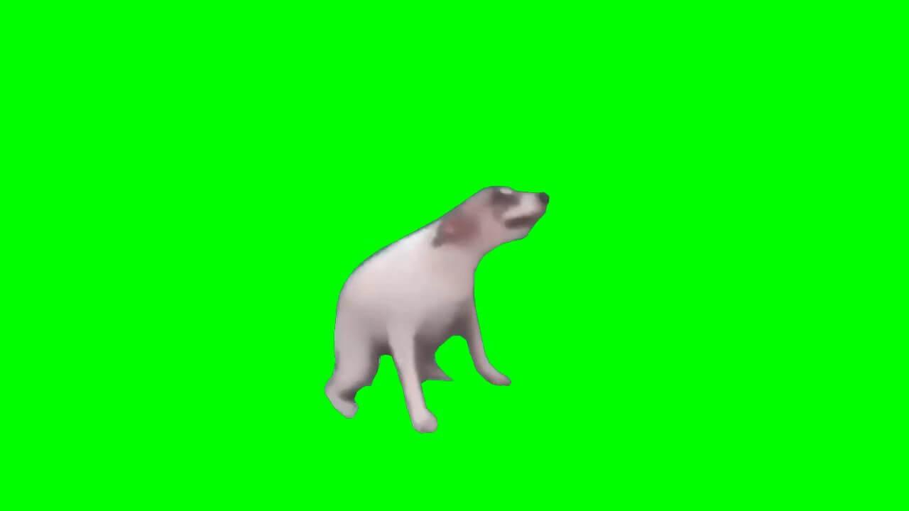 dance till you dead dog 1 (1)