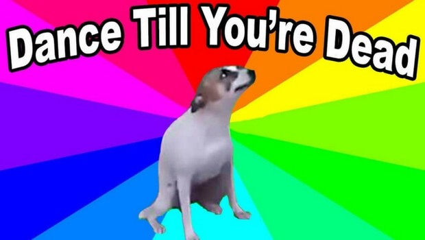 dance till your dead dog feat (1)