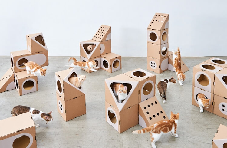 Cardboard Furniture for Cats 1 (1)