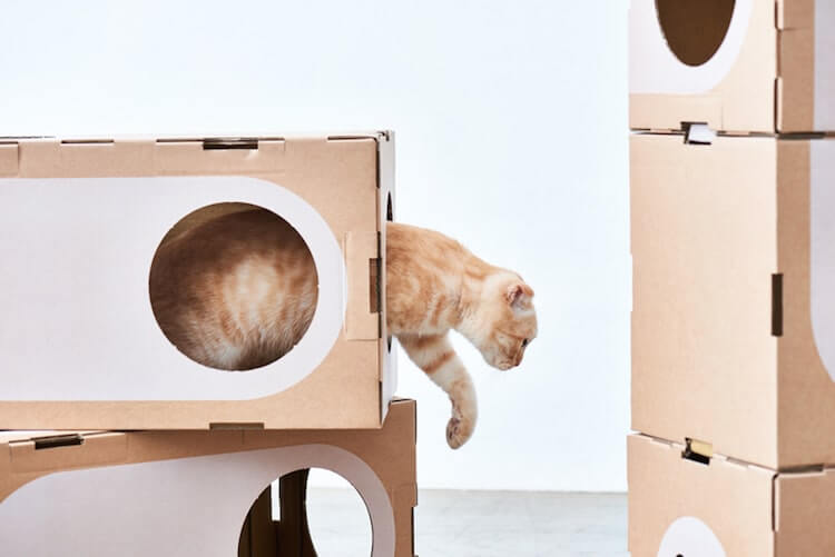 Cardboard Furniture for Cats 10 (1)