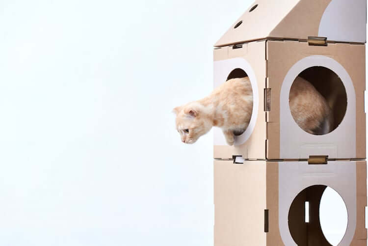 Cardboard Furniture for Cats 11 (1)