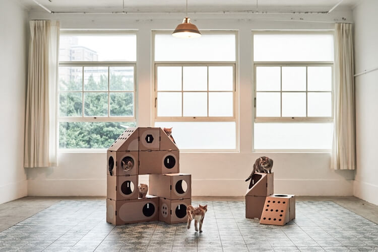 Cardboard Furniture for Cats 12 (1)