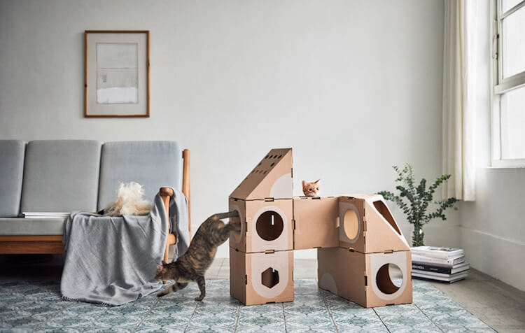 Cardboard Furniture for Cats 4 (1)