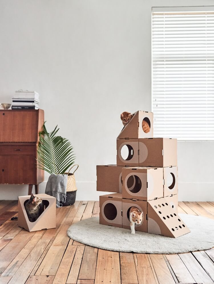 Cardboard Furniture for Cats 5 (1)