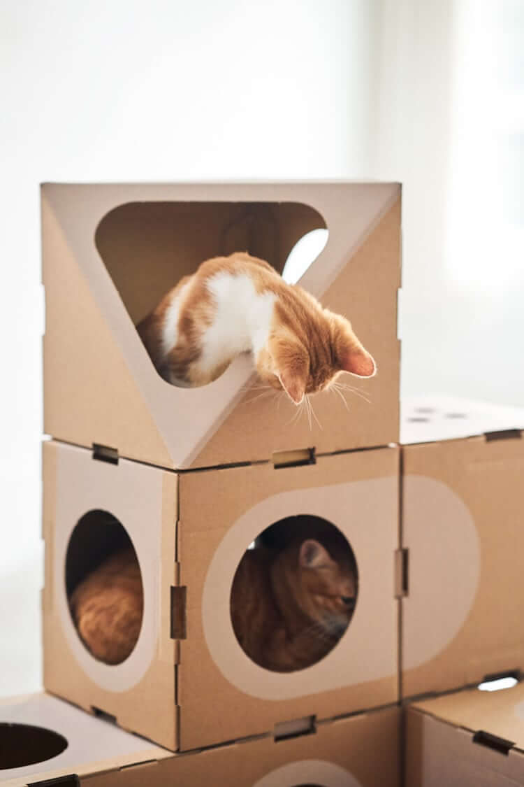 Cardboard Furniture for Cats 8 (1)
