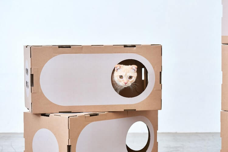 Cardboard Furniture for Cats 9 (1)