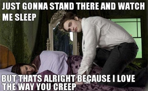 Funny Twilight movie burns 24 (1)