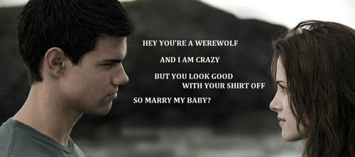 Funny Twilight puns 4 (1)