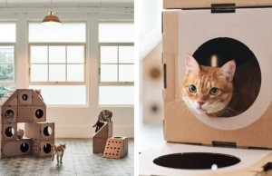 cardboard boxes for cats feat (1)