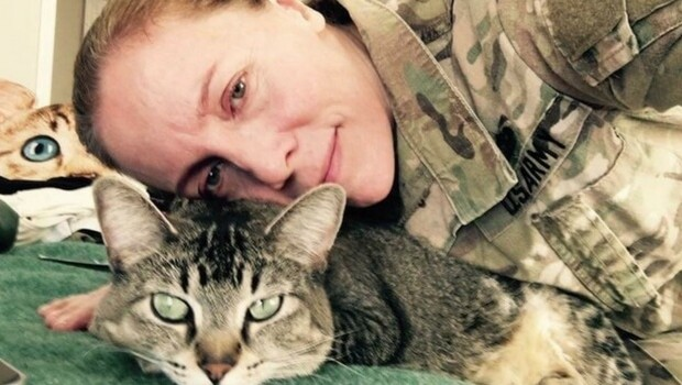cat follows soldier everywhere feat (1)
