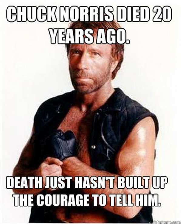 43 Chuck Norris Memes ...