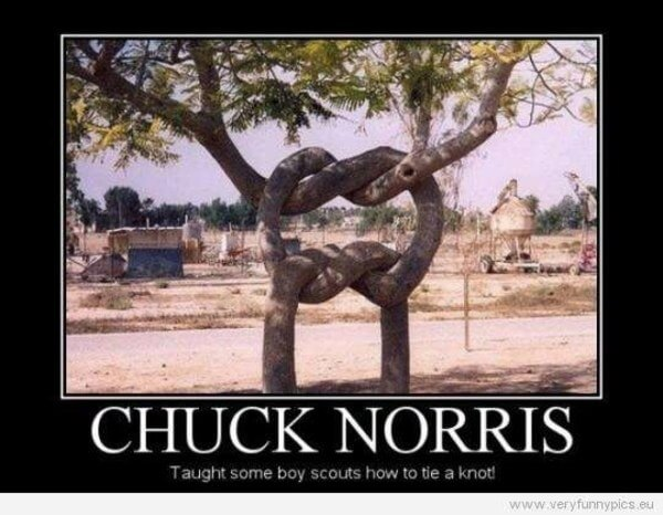 chuck norris tv star 21 (1)