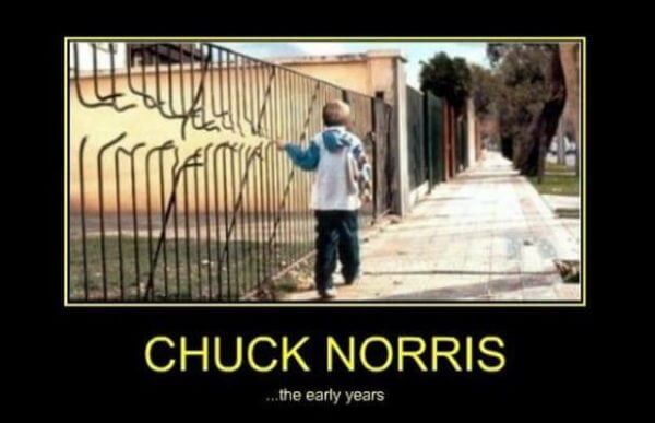 chuck norris funny lines 25