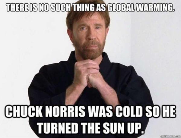chuck norris movies 33