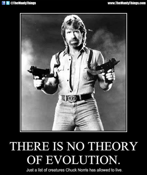 chuck norris movies 39 (1)