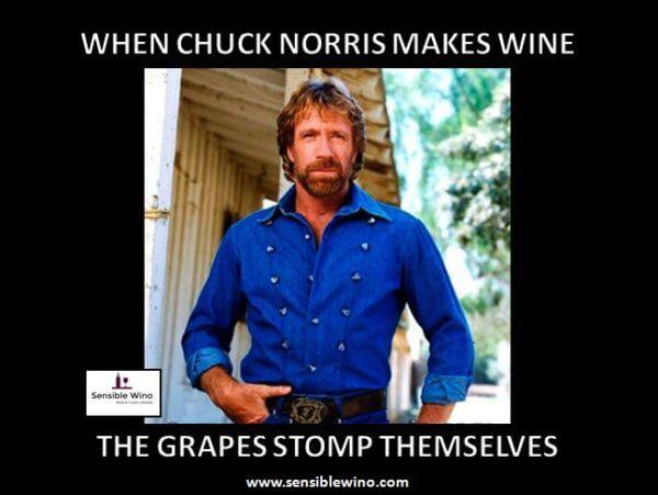 chuck norris memes 43