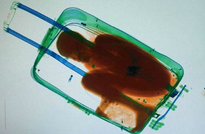 craziest things found by airport security 13 (1)
