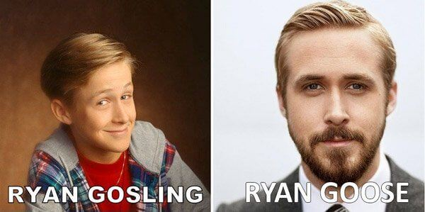 52 Funny Celebrity Name Puns To Make You Feel Better About