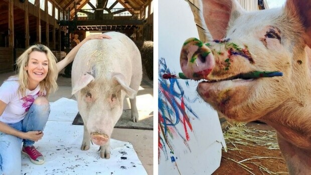pigcasso painting pig feat (1)