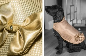 130000 gold diamonds dog jacket feat (1)