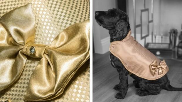 130000 gold diamonds dog jacket feat (1)