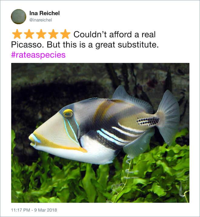 funny zoo animal tweets 10 (1)