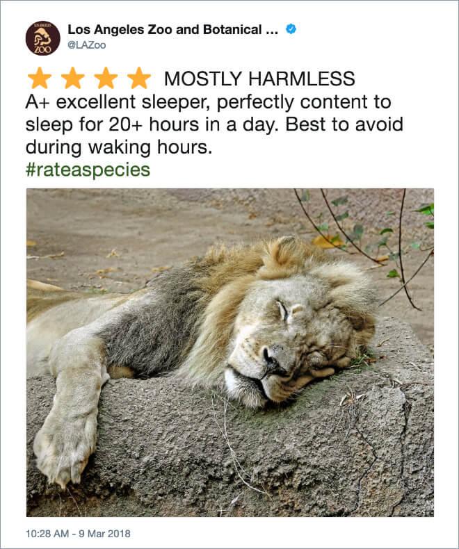 funny zoo animal tweets 13 (1)