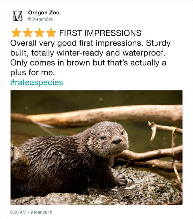 funny zoo animal reviews 17 (1)