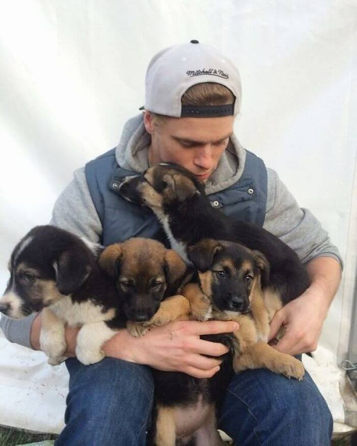 gus kenworthy rescued 90 dogs 14 (1)