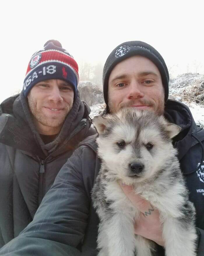 gus kenworthy rescued 90 dogs 9 (1)