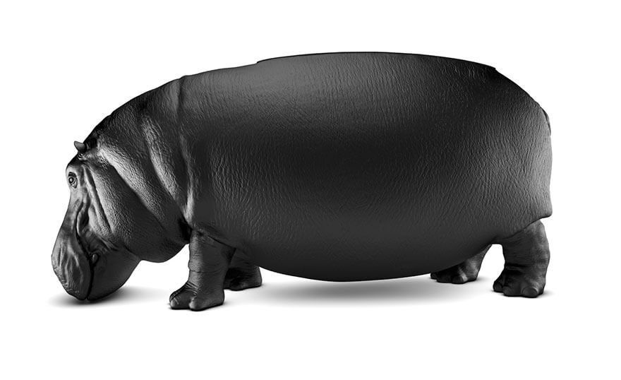 hippopotamus chairs 3 (1)