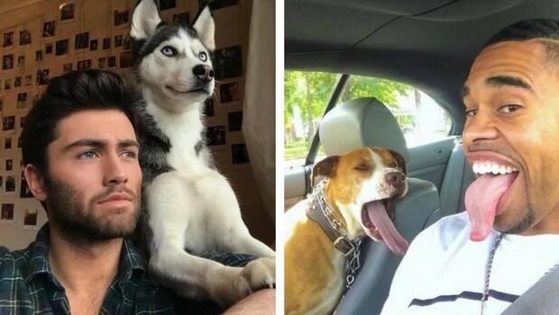 twinning pets feat (1)
