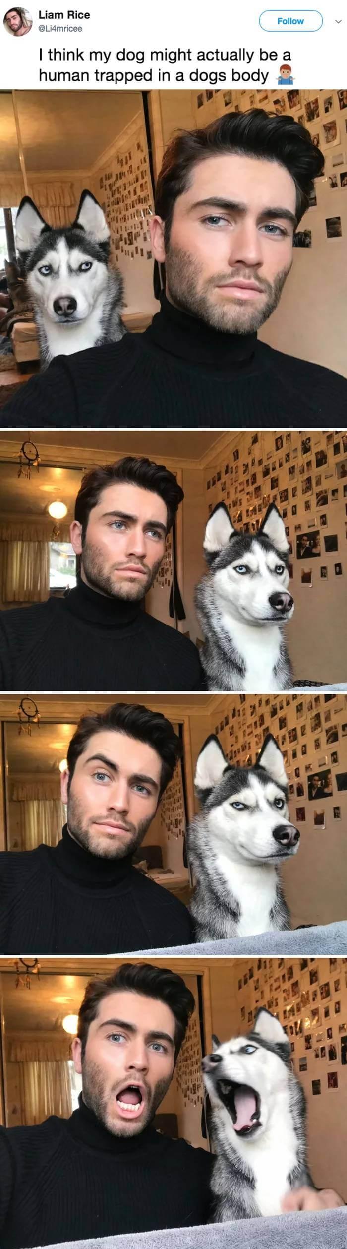 twinning trend pets 1 (1)