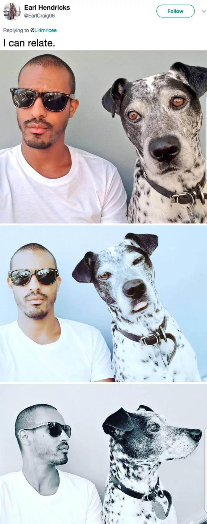 twinning trend pets 2 (1)